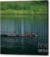 Gliding Across The Water Canvas Print