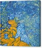 Glight Close Up Canvas Print