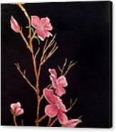 Glistening Blossoms Canvas Print