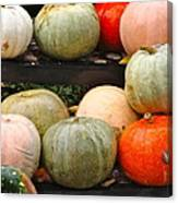 Glistening Gourds Canvas Print