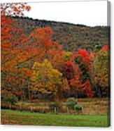 Glorious Fall Leaves Canvas Print