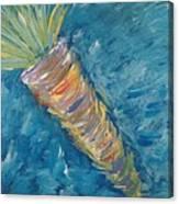 Glory Carrot Canvas Print