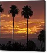 Glory Of Early Morning Canvas Print