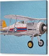 Gloster Gladiator Canvas Print