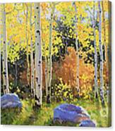 Glowing Aspen  Canvas Print