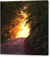 Glowing Morning Canvas Print