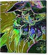 Glowing Sunflower Canvas Print