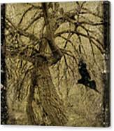 Gnarled And Twisted Tree With Crow Canvas Print