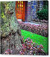Gnarly Tree With Flowers Canvas Print