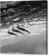 Gnats Inverted Black And White Version Canvas Print