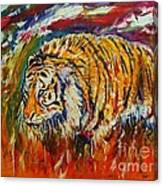 Go Get Them Tiger Canvas Print