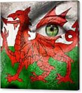 Go Wales Canvas Print
