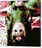 Goat Abstract Canvas Print