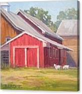 Goats At Play Canvas Print