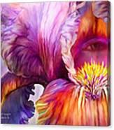 Goddess Of Insight Canvas Print