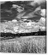 God's Country In Monochrome Canvas Print