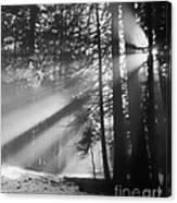 God's Light Canvas Print
