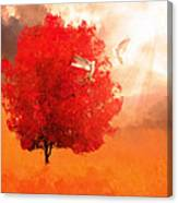 God's Love Canvas Print