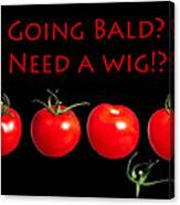 Going Bald Need A Wig? Canvas Print