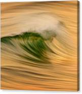 Gold And Green C6j4244 Canvas Print