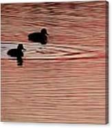Gold Ducks Canvas Print