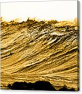 Gold Nugget Canvas Print