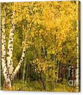 Golden Autumn Forest Mixed Media Painting Canvas Print