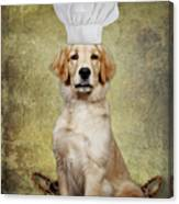 Golden Chef Canvas Print