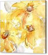 Golden Clematis 2 Canvas Print