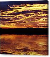 Golden Day Canvas Print
