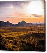 Golden Desert Canvas Print