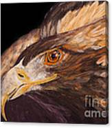 Golden Eagle Close Up Painting By Carolyn Bennett Canvas Print