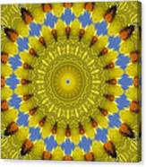 Golden Everlasting Daisy Mandala Canvas Print