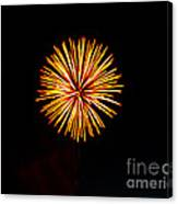Golden Fireworks Flower Canvas Print