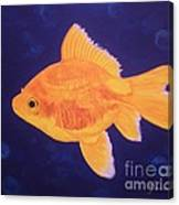 Golden Fish Canvas Print