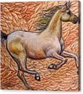 Golden Gallop Canvas Print