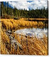 Golden Grass At Red Rocks Lake Canvas Print