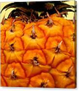 Golden Hawaiian Pineapple Canvas Print