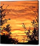 Golden Hour Sunset Canvas Print