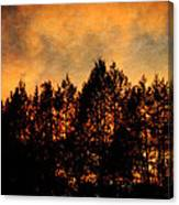 Golden Hours Canvas Print