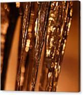 Golden Ice Canvas Print