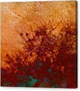 Golden Light - Nature Art Canvas Print