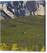 Golden Longs Peak View Canvas Print