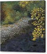 Golden Overhang Canvas Print