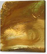 Golden Oyster Shell With Green Reflection Canvas Print