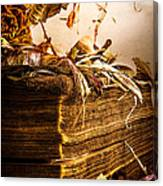 Golden Pages Falling Flowers Canvas Print
