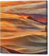 Golden Palouse Canvas Print