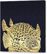 Golden Puffer Fish On Charcoal Black Canvas Print