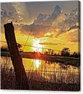 Golden Reflection With A Fence Canvas Print