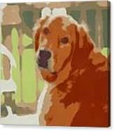 Golden Retriever Profile Canvas Print
